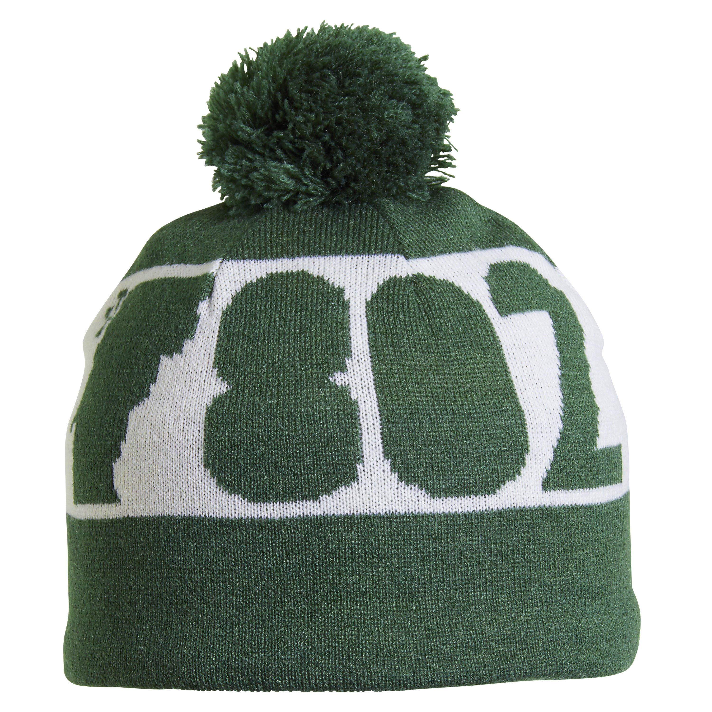 25dcba993ef Turtle Fur 802 Vermont Merino Wool Pom Ski Hat 729998323938